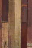Fondo de madera real de la textura del modelo Fotografía de archivo libre de regalías