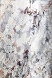 Fondo de mármol de la pared del grunge del efecto Imagen de archivo