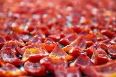 Fondo de muchos tomates rojos que se secan al aire libre en la luz del sol Imágenes de archivo libres de regalías