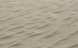 Fondo de ondulación de la duna de arena, una lona en blanco Imagenes de archivo