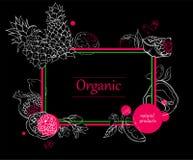 Fondo de Orgalic con la silueta de las frutas tropicales libre illustration