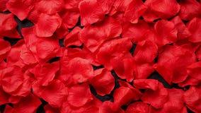 Fondo de pétalos color de rosa rojos hermosos Visión superior