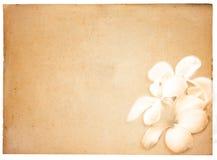 Fondo de papel de la vendimia fotos de archivo libres de regalías