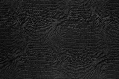 Fondo de papel negro con el espacio para el texto Imágenes de archivo libres de regalías