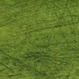 Fondo de papel verde oscuro Fotografía de archivo libre de regalías