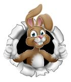 Fondo de Pascua Bunny Thumbs Up Rabbit Breaking libre illustration
