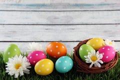 Fondo de Pascua con la hierba Imagenes de archivo