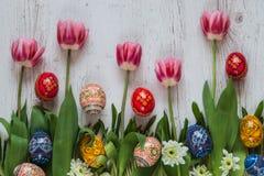 Fondo de Pascua con los huevos de Pascua y los tulipanes rosados en hierba verde Imágenes de archivo libres de regalías