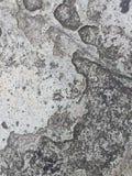 Fondo de piedra de la textura Imágenes de archivo libres de regalías