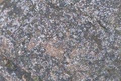 Fondo de piedra de la textura o de la piedra para el diseño Imagen de archivo libre de regalías