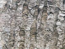 Fondo de piedra natural de la textura Imagen de archivo libre de regalías