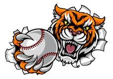 Fondo de Tiger Holding Baseball Ball Breaking ilustración del vector