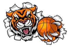 Fondo de Tiger Holding Basketball Ball Breaking Imagen de archivo