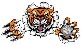 Fondo de Tiger Holding Golf Ball Breaking stock de ilustración