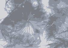 Fondo de un papo del cardo, gris Vector Fotografía de archivo