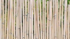 Fondo de una cerca de bambú Imagen de archivo