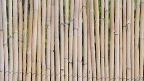 Fondo de una cerca de bambú Foto de archivo libre de regalías