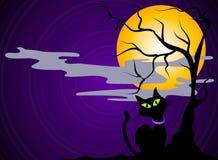 Fondo de Víspera de Todos los Santos del gato negro Imagenes de archivo