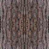 Fondo decorativo abstracto de la corteza Modelo colorido inconsútil Fotografía de archivo