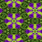 Fondo decorativo astratto del fiore Reticolo variopinto senza giunte Fotografia Stock Libera da Diritti