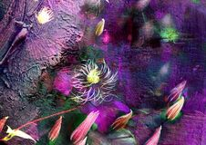 Fondo decorativo con la clemátide de la planta, imagen floral misteriosa, brotes en el fondo violeta, textura de la pintura, imag Fotografía de archivo