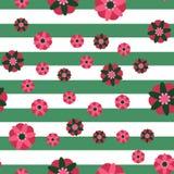 Fondo decorativo de la raya de las flores Fotos de archivo libres de regalías