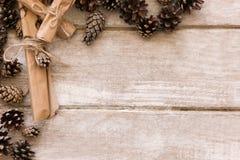 Fondo decorativo del cono del pino con el espacio libre Fotos de archivo libres de regalías