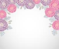 Fondo decorativo del día de fiesta con las camelias rosadas y púrpuras, molinero polvoriento y brunia de la plata libre illustration