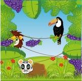 Fondo decorativo variopinto dalla fioritura della giungla verde illustrazione di stock