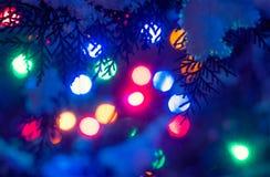Fondo defocused de las luces de los días de fiesta de la Navidad adentro Fotografía de archivo libre de regalías