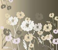 Fondo degli ornamenti dei fiori Fotografia Stock