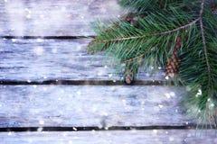 Fondo dei bordi di legno con i rami di pino in precipitazioni nevose Fotografia Stock Libera da Diritti