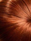 Fondo dei capelli Fotografia Stock Libera da Diritti