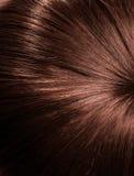 Fondo dei capelli Immagine Stock Libera da Diritti