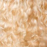 Fondo dei capelli biondi Fotografia Stock