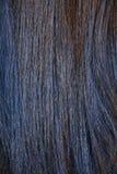 Fondo dei capelli diritti con le tonalità del brouwn immagini stock