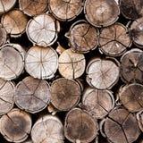Fondo dei ceppi impilati del legname Fotografia Stock Libera da Diritti