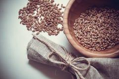 Fondo dei cereali del grano Immagini Stock