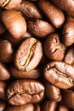 Fondo dei chicchi di caffè Fotografie Stock Libere da Diritti