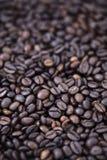 Fondo dei chicchi di caffè - Bokeh Fotografia Stock Libera da Diritti