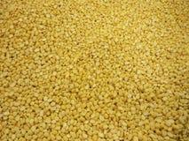 Fondo dei fagioli della soia Fotografie Stock