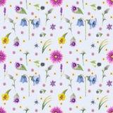 Fondo dei fiori selvaggi Reticolo senza giunte Acquerello del fondo dei fiori selvaggi immagini stock