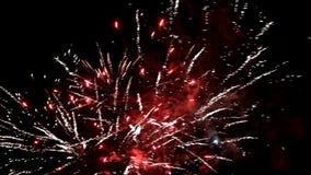 Fondo dei fuochi d'artificio con il suono nella notte