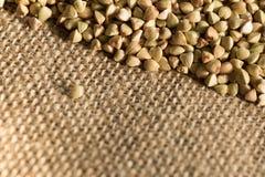 Fondo dei grani del grano saraceno Fotografie Stock Libere da Diritti