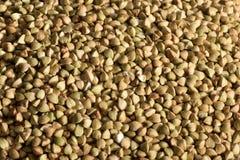 Fondo dei grani del grano saraceno Fotografia Stock Libera da Diritti