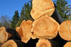 Fondo dei legnami segati Fotografia Stock