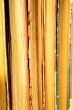 Fondo dei molti libri Immagini Stock