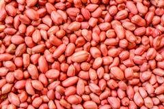Fondo dei noccioli dell'arachide Immagine Stock Libera da Diritti