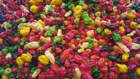 Fondo dei peperoncini rossi Fotografia Stock