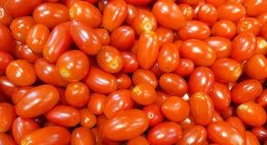 Fondo dei pomodori dell'uva rossa Immagine Stock